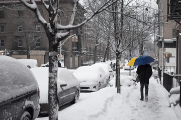 Fototapeta A person walking down a snow-covered street, carrying a blue and yellow umbrella, in Harlem, New York, NYC, USA
