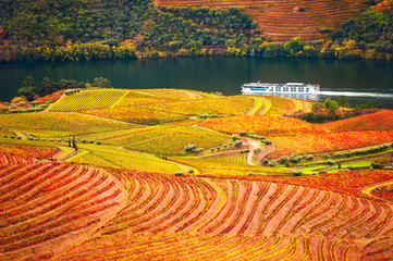 Tuinposter Oranje eclat Douro river valley with vineyards in Portugal. Portuguese wine region. Beautiful autumn landscape