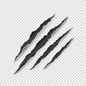 Vector illustration of animal claw scratches isolated on transparent background