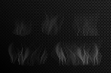 Garden Poster Smoke Set of isolated smoke for food on a transparent background. White steam from food, pizza, water, soup. Vector illustration set