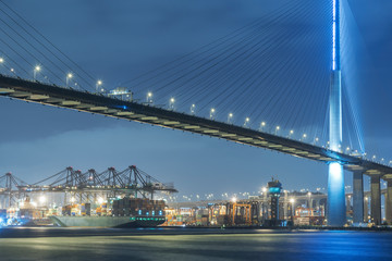 Cargo port and bridge in Hong Kong city at night Fotomurales