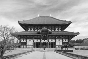 Fototapete - The Todaiji temple in Nara, Japan