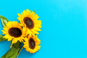 Bouquet of sunflowers on blue background top-down copy space
