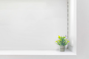 White shelf against white wall with green plant. copy space