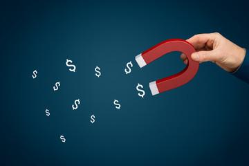 Financial success concept - magnet for money