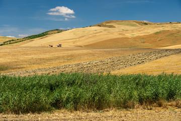 Rural landscape in Basilicata at summer
