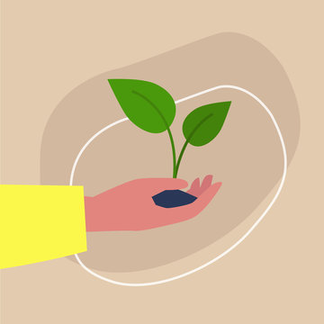 Go green, light-skinned hand holding a plant sprout, sustainability and responsibility, eco friendly behaviour