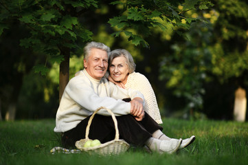 portrait of beautiful senior couple sitting on grass