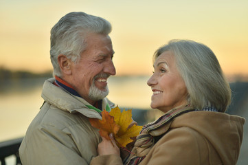 Portrait of smiling senior couple posing in park