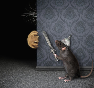 The cat's claws and whiskers are visible from behind a wall. The black rat knight in a helmet with an inlaid sword is hiding from this cat.