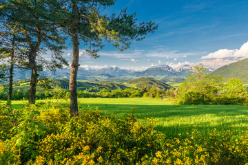 Green mountain valley in Provence