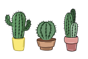 A set of cacti. Vector illustration of cacti in cartoon style. Doodle style color picture.