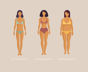 Ectomorph, mesomorph, endomorph. Woman in underwear three different kinds of body sizes and types of figure. Female body constitution. Cartoon vector illustration in flat design style.