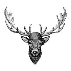 Deer. Wild animal wearing pirate bandana. Brave sailor. Hand drawn image for tattoo, emblem, badge, logo, patch