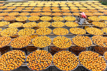 From above of Asian woman in hat smiling while exploring factory with orange drying in sun persimmon during travel at Taiwan