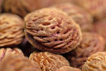 Pfirsichkerne in einer Nahaufnahme