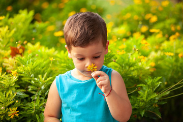 little boy with a flower in the park