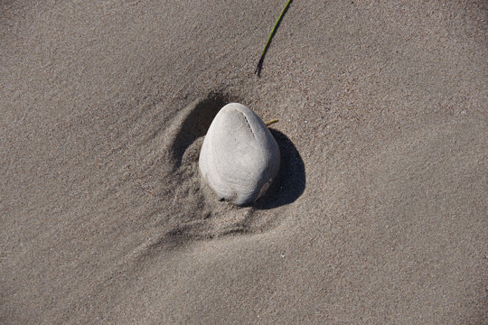 High angle close-up view of a single rock in the wet beach sand