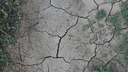 Cracked dry earth on rural path