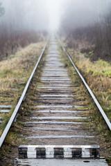 Empty railway goes through forest, vertical photo