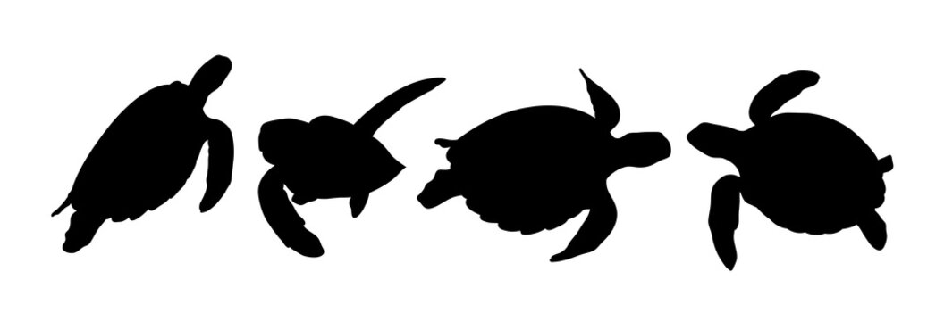 Green sea turtle silhouette 02. Good use for symbol, logo, web icon, mascot, sign, or any design you want.