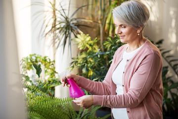 people, housework and care concept - happy senior woman with spray bottle spraying houseplants at home
