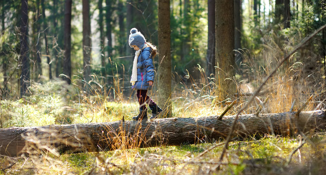 Cute little girl having fun during forest hike on beautiful spring day. Child exploring nature.