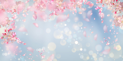 Flying petals on a blue background. Flowers and petals in the wind. Vector background with spring plum or cherry blossom