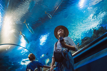 Young female with modern photo camera walking in indoor huge aquarium tunnel, enjoying a underwater sea inhabitants. Around the world traveling concept image.