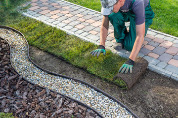 Photo sur Plexiglas Vieux rose Gardener applying turf rolls in the backyard