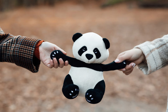 Girls hands holding panda on a background of autumn garden. Panda toy. Panda doll black and white, black rim of eyes, panda toy for children