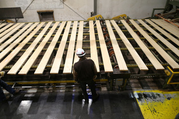 A worker inspects lumber on a conveyor belt at West Fraser Pacific Inland Resources sawmill in Smithers