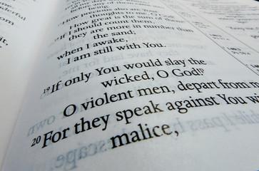 Psalm Verse 139 verse 19