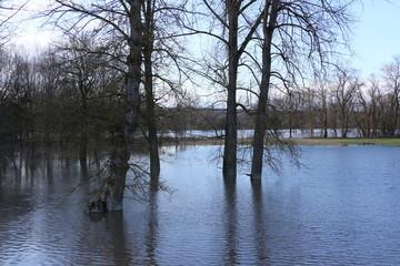 Hochwasser an der Donau in Neustadt an der Donau in Bayern