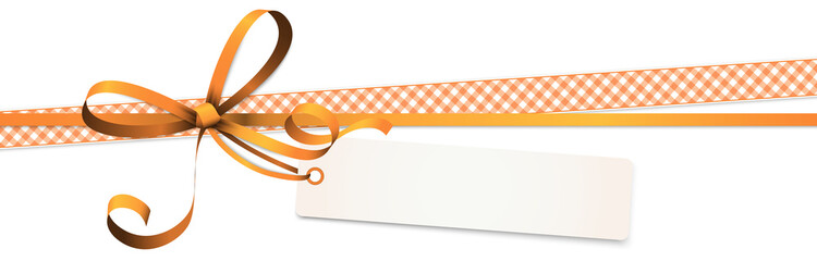 Spoed Foto op Canvas Hoogte schaal orange colored ribbon bow with hang tag