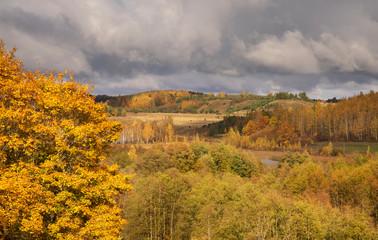 Autumn landscape near Izborsk city. Russia
