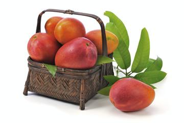 Irwin mango on the white background