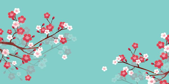 梅 花 春 背景