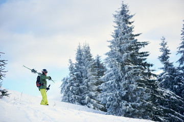 Side view of male skier in goggles and helmet carrying his skis on shoulders and ski poles. Freerider walking down along fir trees forest in snow-covered mountains after skiing day. Low angle snapshot