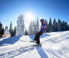 Skiing from high mountain slope. Woman skier falling down on snow. Concept of active outdoors winter vacation at resort. Sunshine in blue sky and snow-covered trees on background. Side general view.
