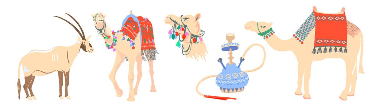 desert symbols of the arab emirates - arabian oryx, camel and hookah
