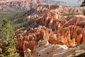 Summer sunshine on Bryce Canyon National Park