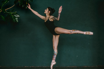 Ballerina, ballet, tattoo, body, Pointe shoes, photo Studio,tutu Bolshoi theater, grace, Swan, fragility , grace, fuete, Swan lake, dancer ,balleroon , stage, misery, Nutcracker, leg ,skirt, foot legs