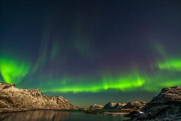 Foto op Plexiglas Noorderlicht amazing northern lights, aurora borealis over the mountains in the North of Europe - Lofoten islands, Norway