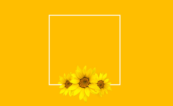yellow floral background with flowers