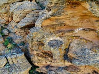Empty nest of Long-legged Buzzard or Buteo rufinus on rock