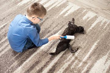Fototapeta Czarny domowy kot leży na dywanie. Chłopiec w wieku szkolnym trzyma wałek do czyszczenia ubrań i czyści sierść kota.  obraz