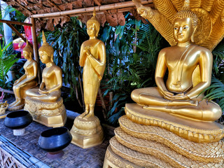 picture of some Buddha statues in a Temple in Thailand