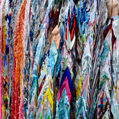 Foto op Plexiglas Paradijsvogel Fashion Tokyo Narita in Japan - HND - NRT - OKA - CTS