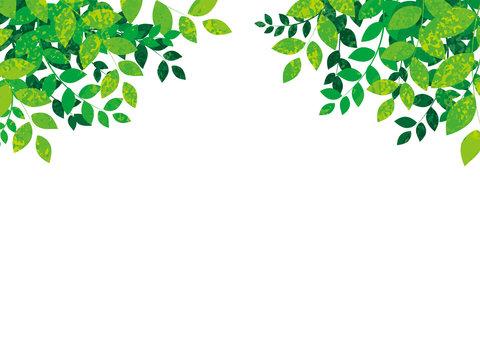 春の新緑の背景ベクターイラスト